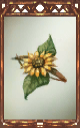 Image of the Sunflower Barrette Magnus