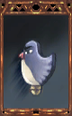 Image of the Mature Birdie Magnus