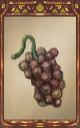 Image of the Rotten Grapes Magnus