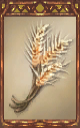 Image of the Wheat Magnus