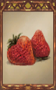 Image of the Strawberries Magnus