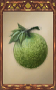 Image of the Melon Magnus