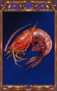 Image of the Shrimp Magnus